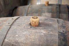 Adega de vinho, Geórgia fotografia de stock