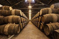 Adega de vinho, Porto fotos de stock