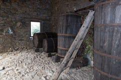Adega de vinho velha Fotografia de Stock