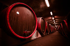 Adega do armazenamento da bebida, tambores Foto de Stock