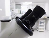 Adeguamento della diottria e lente oculare di un microscopio in un laboratorio luminoso immagine stock