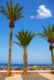 Adeje sunie Las Americas wyrzucać na brzeg w południowym Tenerife obrazy royalty free