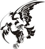 Adelaar - roofzuchtige vogel. Royalty-vrije Stock Afbeeldingen
