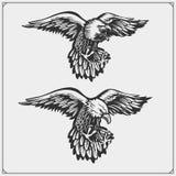 adelaars Emblemen en malplaatje voor het ontwerp van de sportclub stock illustratie