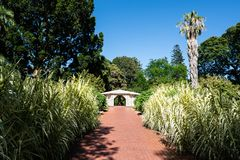 Free Adelaide Botanic Garden View With Alley Green Nature And White Pavilion In Adelaide South Australia Stock Photos - 139730593