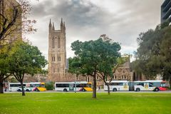 Adelaide-Busse bei Victoria Square in Adelaide CBD Lizenzfreie Stockfotografie