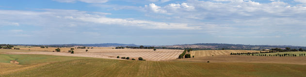 Adelaide hills. Panorama view with farm fields stock images