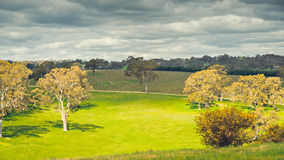 Adelaide Hills landscape. Adelaide Hills wine region landscape viewed from Woodside, South Australia stock image