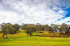 Adelaide Hills typical local landscape. Typical Adelaide Hills local landscape on a day, rural South Australia royalty free stock images