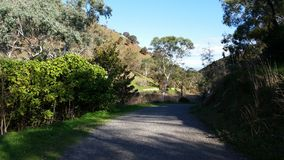 Adelaide Hills walking trail. Find this walking trail in the foothills of Adelaide South Australia in a national park stock photo