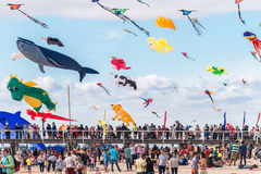 Adelaide International Kite Festival 2016 Lizenzfreie Stockfotos