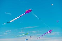 Adelaide International Kite Festival Stock Photo