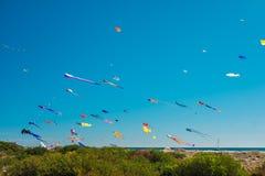 Adelaide International Kite Festival, SA Lizenzfreie Stockfotografie