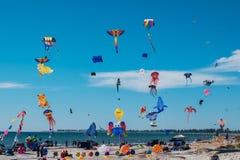 Adelaide International Kite Festival, SA Lizenzfreie Stockfotos