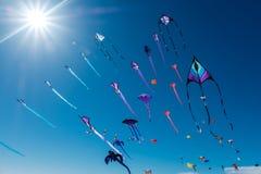 Adelaide International Kite Festival, SA Stockfotografie