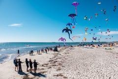 Adelaide International Kite Festival, SA Stockfotos