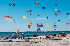 Adelaide International Kite Festival, SA Lizenzfreie Stockbilder
