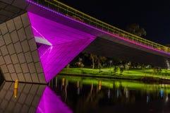 Adelaide Night 12 Lizenzfreie Stockfotografie