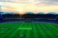 Adelaide-Oval bei Sonnenuntergang Stockfotografie