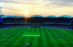 Adelaide oval at sunset Stock Photography