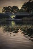 Adelaide - più vecchio parco - sera Immagine Stock