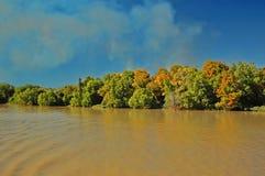 Adelaide River nära Darwin, Australien Arkivbild