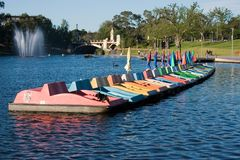 Adelaide river torrens. The river Torrens and her famous paddle boats and fountain Stock Photo