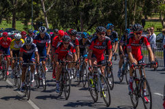 Adelaide Tour Down Under 15 Lizenzfreie Stockbilder
