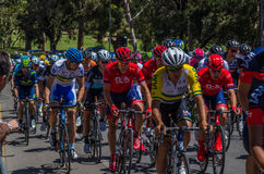Adelaide Tour Down Under 18 Stockfoto