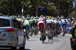 Adelaide Tour Down Under 25 Stockfoto