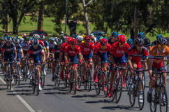 Adelaide Tour Down Under 26 Lizenzfreies Stockbild