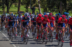 Adelaide Tour Down Under 27 Stockfoto