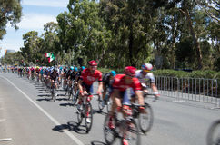 Adelaide Tour Down Under 37 Lizenzfreies Stockfoto