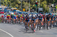 Adelaide Tour Down Under 42 Stockbild
