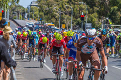 Adelaide Tour Down Under 44 Lizenzfreies Stockbild