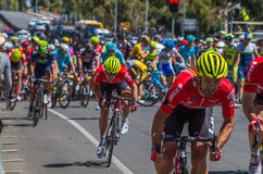 Adelaide Tour Down Under 45 Lizenzfreie Stockbilder