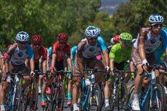 Adelaide Tour Down Under 2016 Lizenzfreie Stockfotos