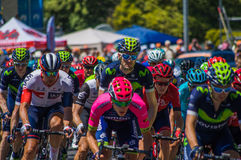 Adelaide Tour Down Under 2016 Lizenzfreie Stockbilder