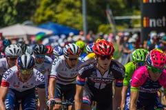 Adelaide Tour Down Under 2016 Fotografia Stock Libera da Diritti