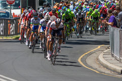Adelaide Tour Down Under 2016 Fotografie Stock Libere da Diritti