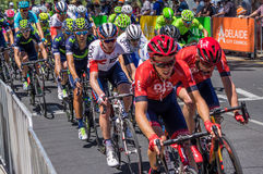 Adelaide Tour Down Under 2016 Stockfotos