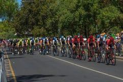 Adelaide Tour Down Under 2016 Stockfoto
