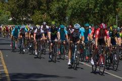 Adelaide Tour Down Under 2016 Stockfotos