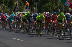 Adelaide Tour Down Under 2016 Stockbilder