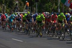 Adelaide Tour Down Under 2016 Stockbilder
