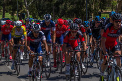 Adelaide Tour Down Under 16 Stock Image