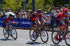 Adelaide Tour Down Under 21 Stock Image
