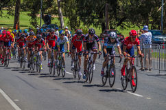 Adelaide Tour Down Under 22 Royalty Free Stock Images
