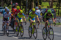 Adelaide Tour Down Under 24. Adelaide Australia 2015 January 25 The Tour Down Under races around the beautiful city streets of Adelaide royalty free stock image