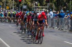 Adelaide Tour Down Under 28 Stock Photo